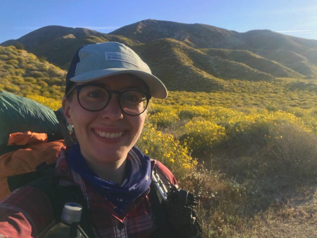 Pct 2019 Tag 17 Tentsites Near Cottonwood Canyon Wash